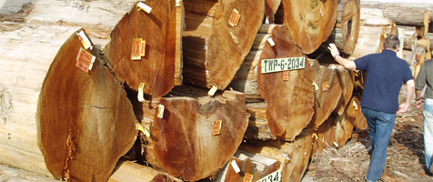 western red cedar | products | cowichan lumber