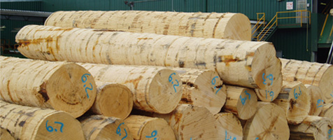 yellow cedar | products | cowichan lumber